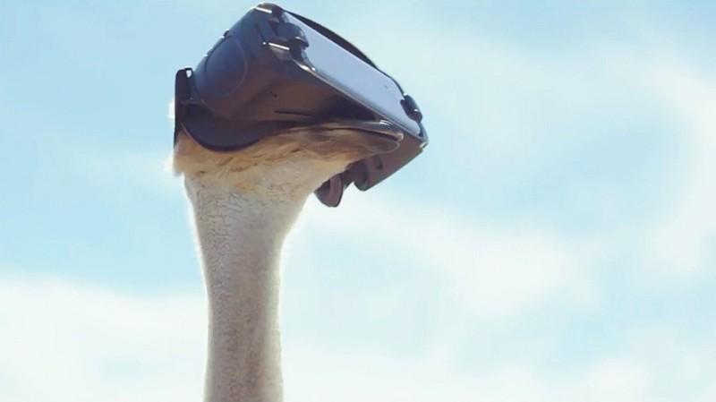 У Samsung даже страус полетел // gmbox.ru